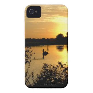 Sunset Swan Lake orange yellow iPhone 4 Cases