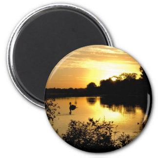 Sunset Swan Lake orange yellow Magnet