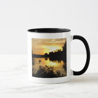 Sunset Swan Lake orange yellow Mug