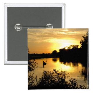 Sunset Swan Lake orange yellow Pinback Button