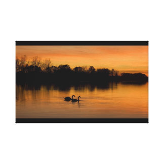 Sunset Swans photo on canvas Stretched Canvas Prints