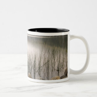 Sunset through fog over Upper Hadlock Pond Two-Tone Coffee Mug