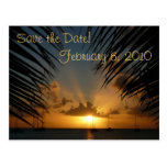Sunset Through Palm Fronds Save the Date Postcard