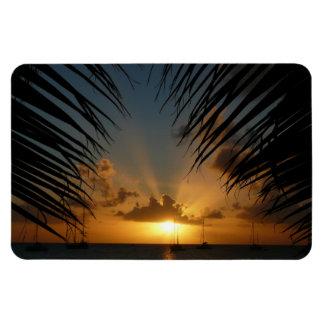 Sunset Through Palm Fronds Tropical Seascape Rectangular Photo Magnet