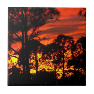 Sunset through pines red yellow small square tile