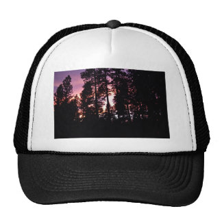 Sunset Through the Pines Trucker Hat