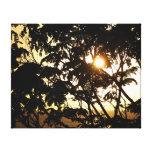 Sunset Through Trees Canvas Print