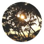 Sunset Through Trees I Sticker