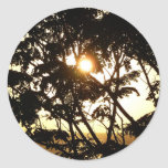 Sunset Through Trees I Tropical Photography Classic Round Sticker