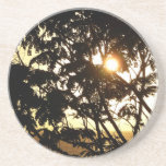 Sunset Through Trees I Tropical Photography Coaster