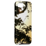 Sunset Through Trees I Tropical Photography iPhone SE/5/5s Case