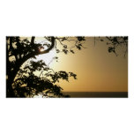 Sunset Through Trees I Tropical Photography Perfect Poster