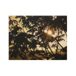 Sunset Through Trees I Tropical Photography Wood Poster