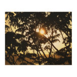 Sunset Through Trees I Tropical Photography Wood Wall Art