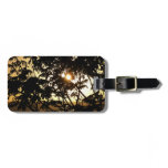 Sunset Through Trees I Tropical Tag For Luggage