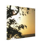Sunset Through Trees II Tropical Photography Canvas Print