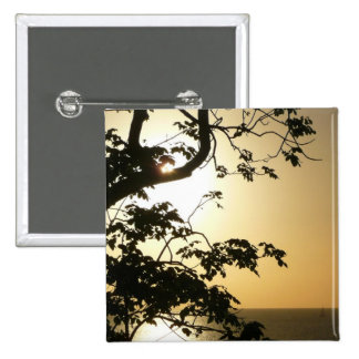 Sunset Through Trees II Tropical Photography Pinback Button