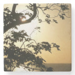 Sunset Through Trees II Tropical Photography Stone Coaster