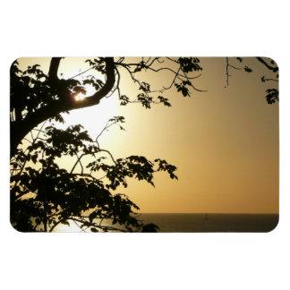 Sunset Through Trees Premium Magnet