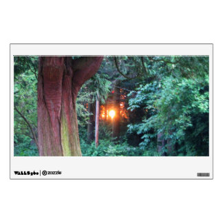 Sunset Through Trees Wall Decal