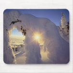 Sunset thru the Snowghosts at Big Mountain near Mouse Pads