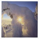 Sunset thru the Snowghosts at Big Mountain near Ceramic Tile