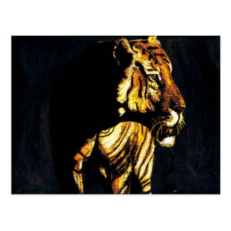 sunset tiger postcard