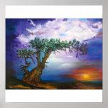 Sunset Tree Framed Prints Print