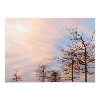Sunset Trees In Winter Card