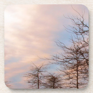 SUNSET TREES IN WINTER COASTER