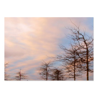 Sunset Trees In Winter Large Business Card