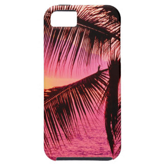 Sunset Tropical Setting Hawaii iPhone 5 Cases