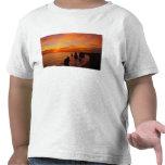 Sunset, Twelve Apostles, Port Campbell National Tee Shirt
