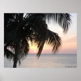 Sunset under a Palm Montegor Bay Jamaica Canvas Pr Posters
