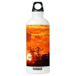 Sunset Water Bottle