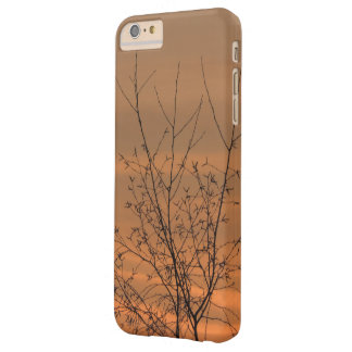 Sunset whit tree branches, colorful sky barely there iPhone 6 plus case
