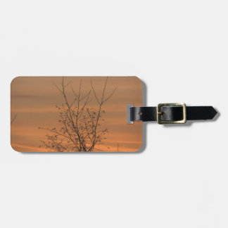 Sunset whit tree branches, colorful sky luggage tag