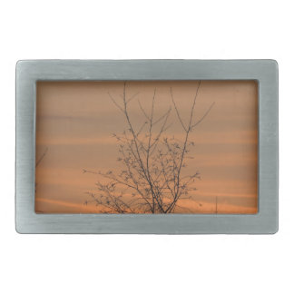 Sunset whit tree branches, colorful sky rectangular belt buckle