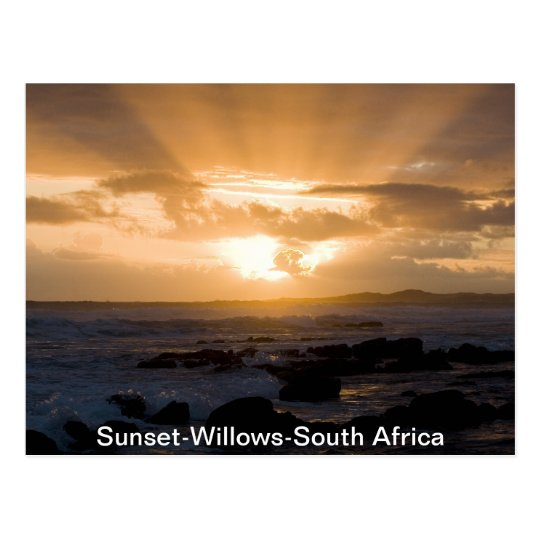 Sunset-Willows-South Africa Postcard