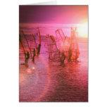 Sunset Windsurfing Card