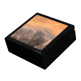 Sunset with Bare Trees Gift Box