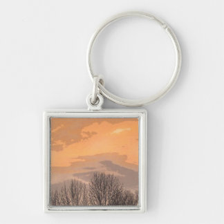 Sunset with Bare Trees Keychain