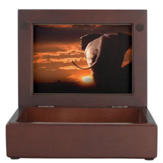 Sunset with Elephant Memory Box