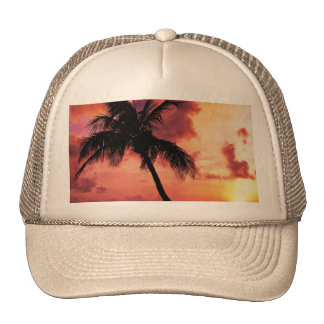 Sunset with Palm Trucker Hat
