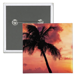 Sunset with Palm Pinback Buttons