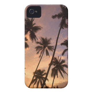 Sunset with Palm Trees Moorea French Polynesia 2 Blackberry Bold Cover