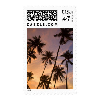 Sunset with Palm Trees, Moorea, French Polynesia 2 Postage