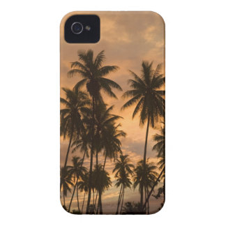 Sunset with Palm Trees Moorea French Polynesia Blackberry Bold Covers
