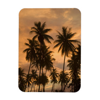 Sunset with Palm Trees, Moorea, French Polynesia Magnet