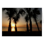 Sunset with Palms, 106 Greeting Cards